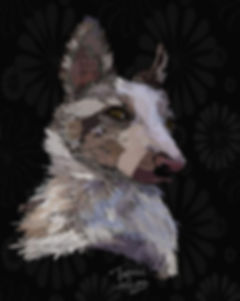 Quick warm-up dog portrait 😊___chrissy_