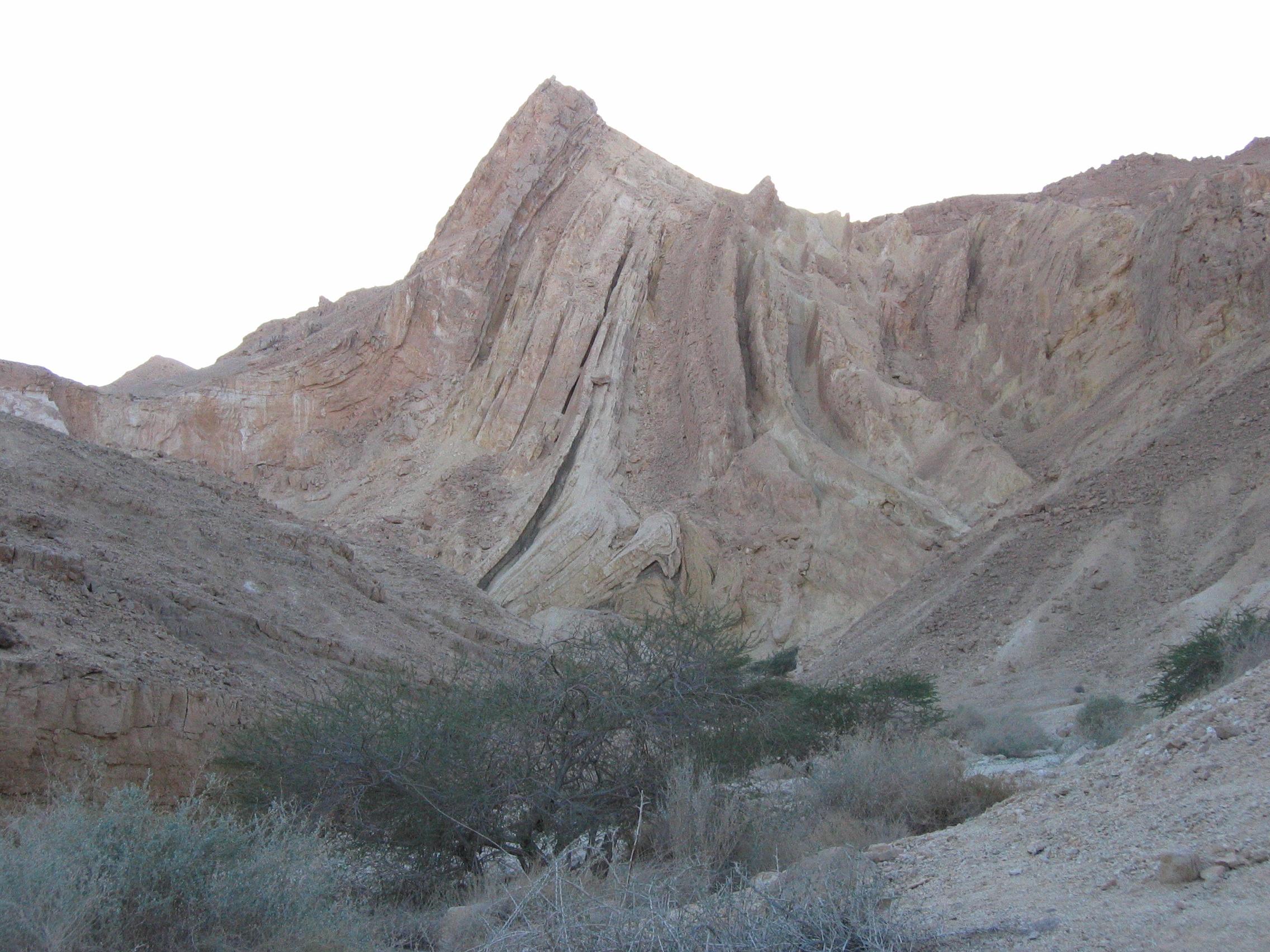 הקיר המשוגע ליד עין גלד מזרח הרמון