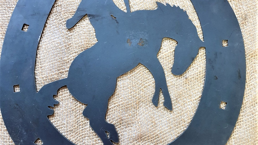 Bronco in horseshoe