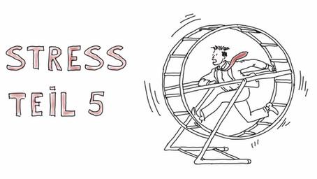 Was passiert eigentlich bei Stress? Teil 5 - Warum entsteht eigentlich Stress in uns?