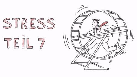 Was passiert eigentlich bei Stress? Teil 7 - Dauerstress im Alltag senken