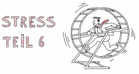 Was passiert eigentlich bei Stress? Teil 6 - Angemessen auf Stress reagieren