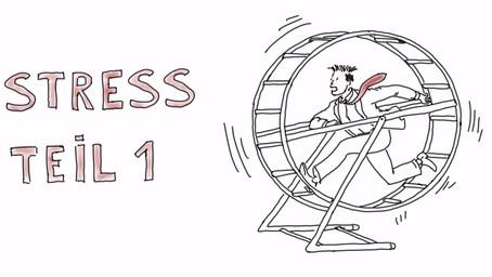 Was passiert eigentlich bei Stress? Teil 1 - Woher kommt unsere Stressreaktion?