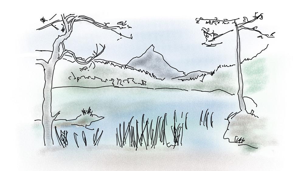 Warum die Natur so entspannend ist - Achtsamkeit Blog