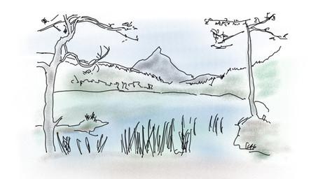 Warum die Natur so entspannend wirkt