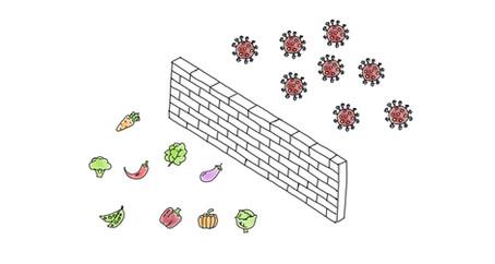 Mein Immunsystem stärken - Ernährung und Fasten