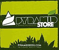 Pyramid Store.jpeg