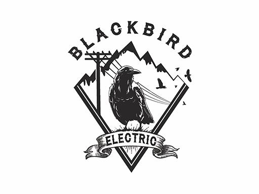 BlackBirdElectric-37