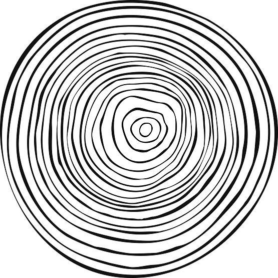 Tree_rings_Texture%20copy_edited.jpg