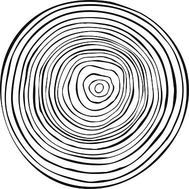 Tree_rings_Texture%252520copy_edited_edi