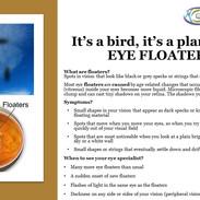 Floaters.jpg