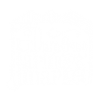 DFM logo white.png