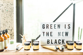 Green and Anchor-0036.jpg