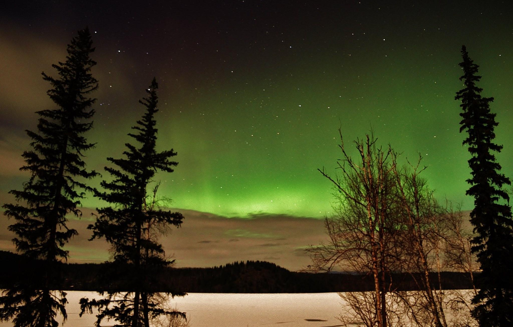 Northern Lights over Horsefly Lake