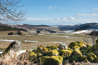 Self Catering Accommodation in the Cairngorms