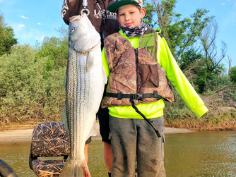 Outstanding Striped Bass fishing!