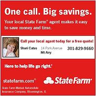 SheriCates_StateFarm_ad.jpg