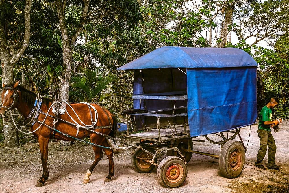 Flickr - Cuba