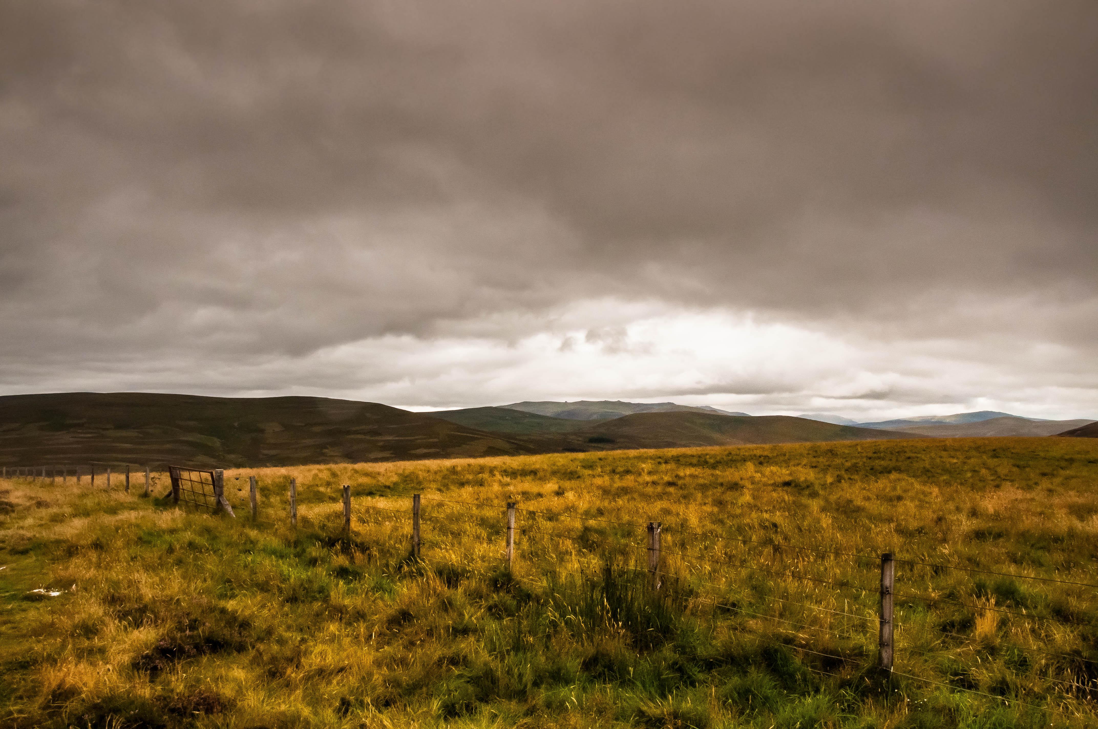 Flickr - Un timido raggio di sole sulla brughiera.jpg.jpg.jpg