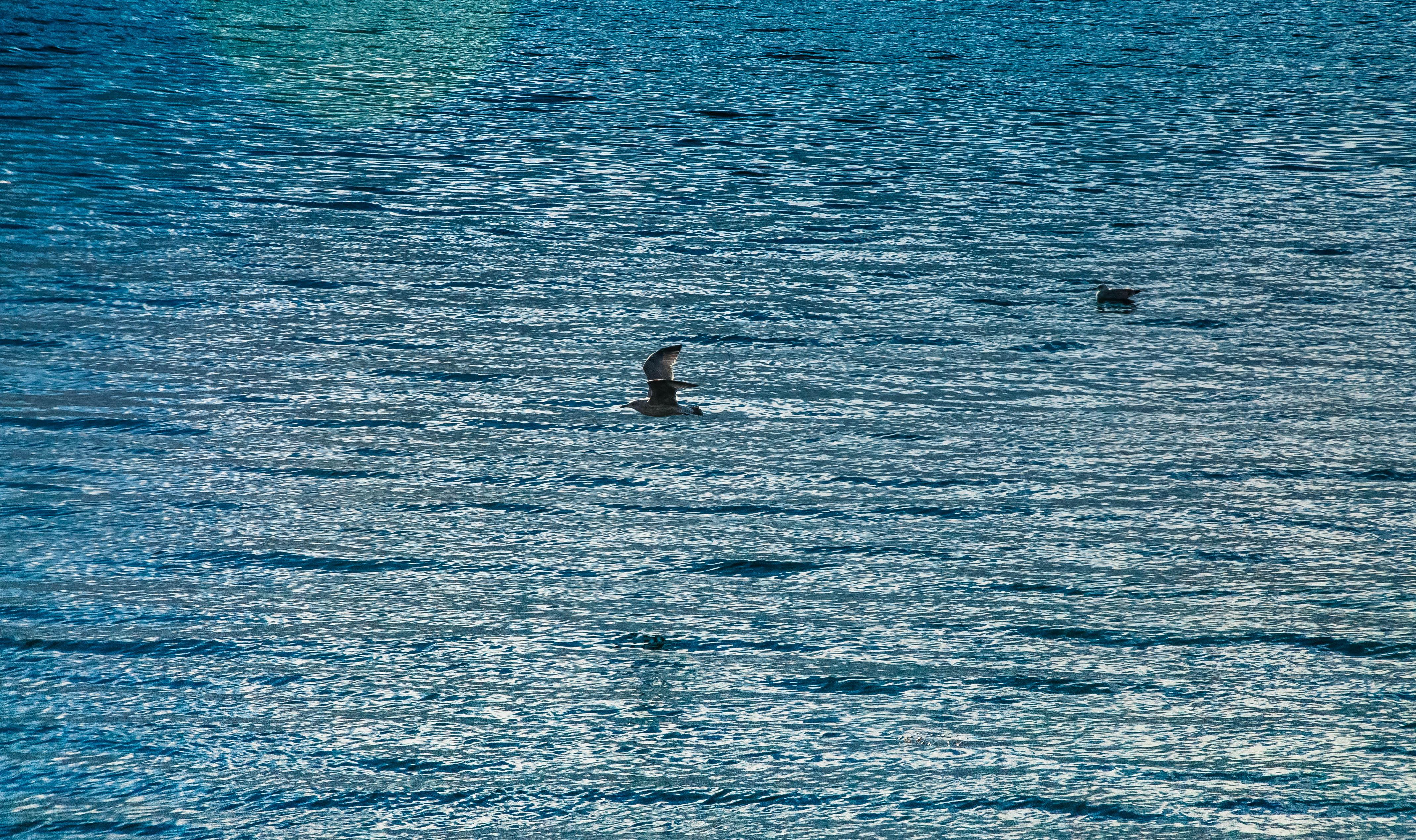 Flickr - I cieli sopra ad Oban