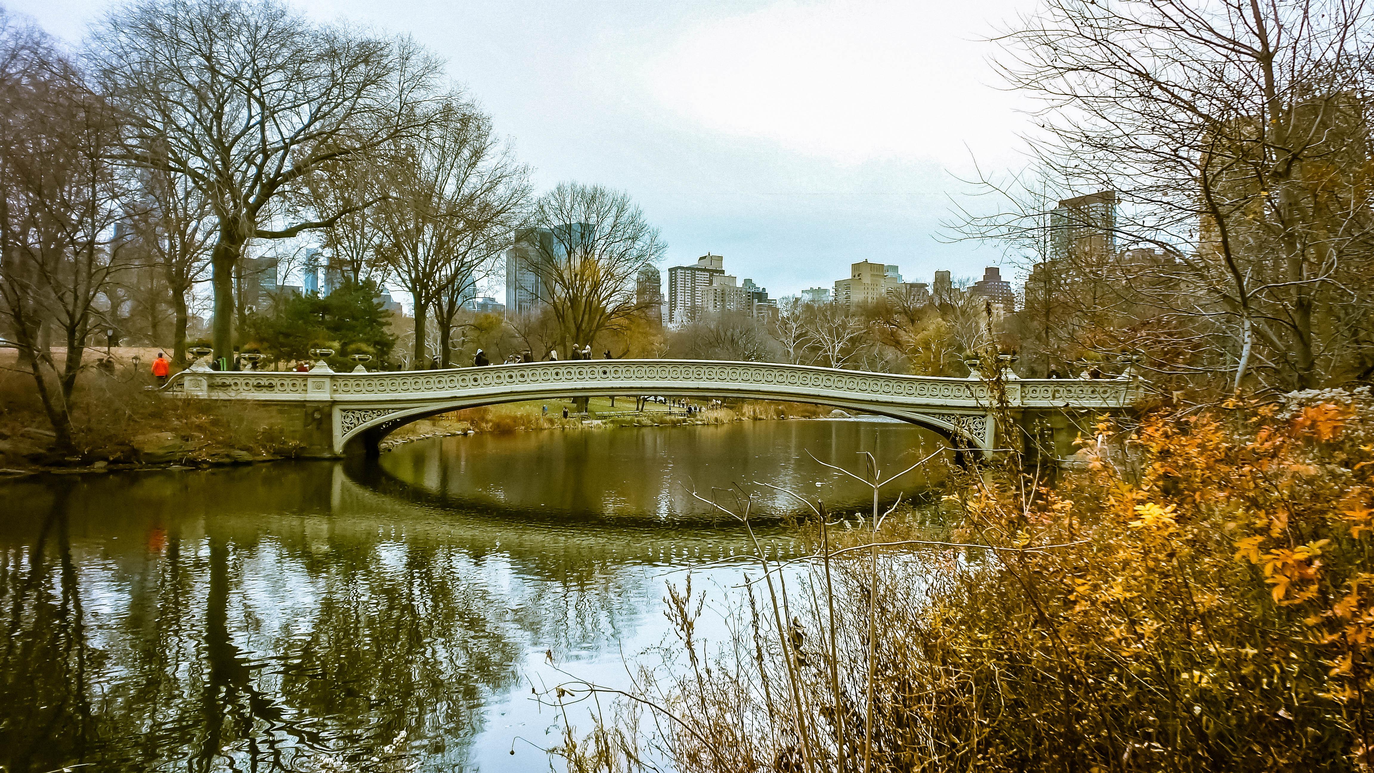 Flickr - Central Park, Nyk, soul vibrations.jpg