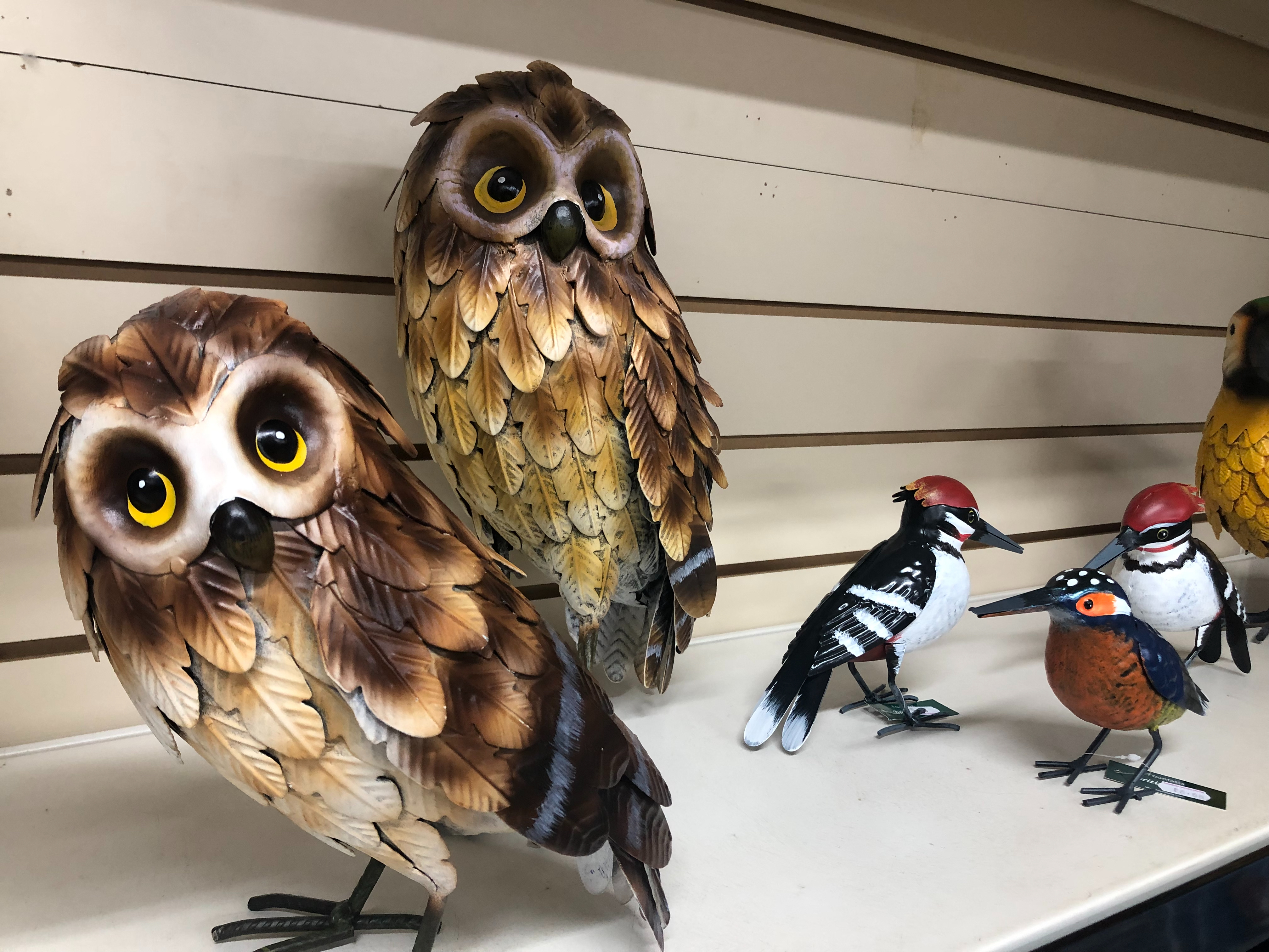 Outdoor & Indoor Owl