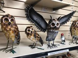 Outdoor & Indoor Owl