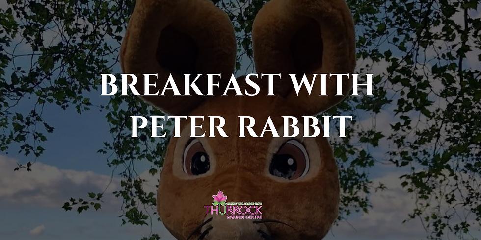 Breakfast with Peter Rabbit 3.4