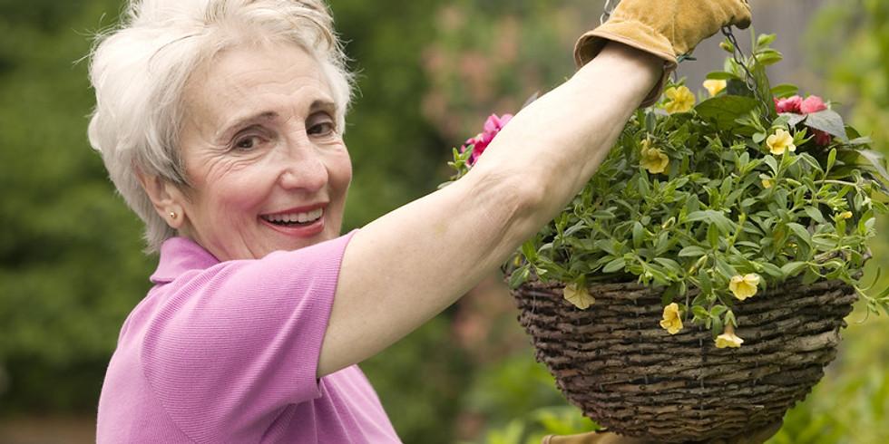Plant Your Own Hanging Basket Workshop