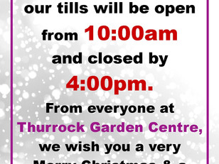 Christmas Eve- tills open at 10am and we will be closed by 4pm.