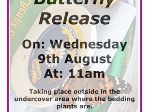 The Great Butterfly Release- 9.8.17 @ 11am