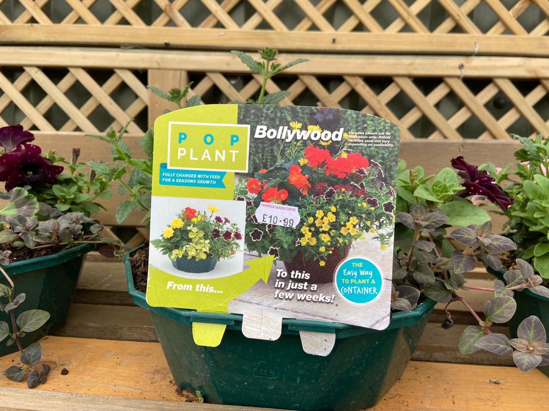 Instant Planters