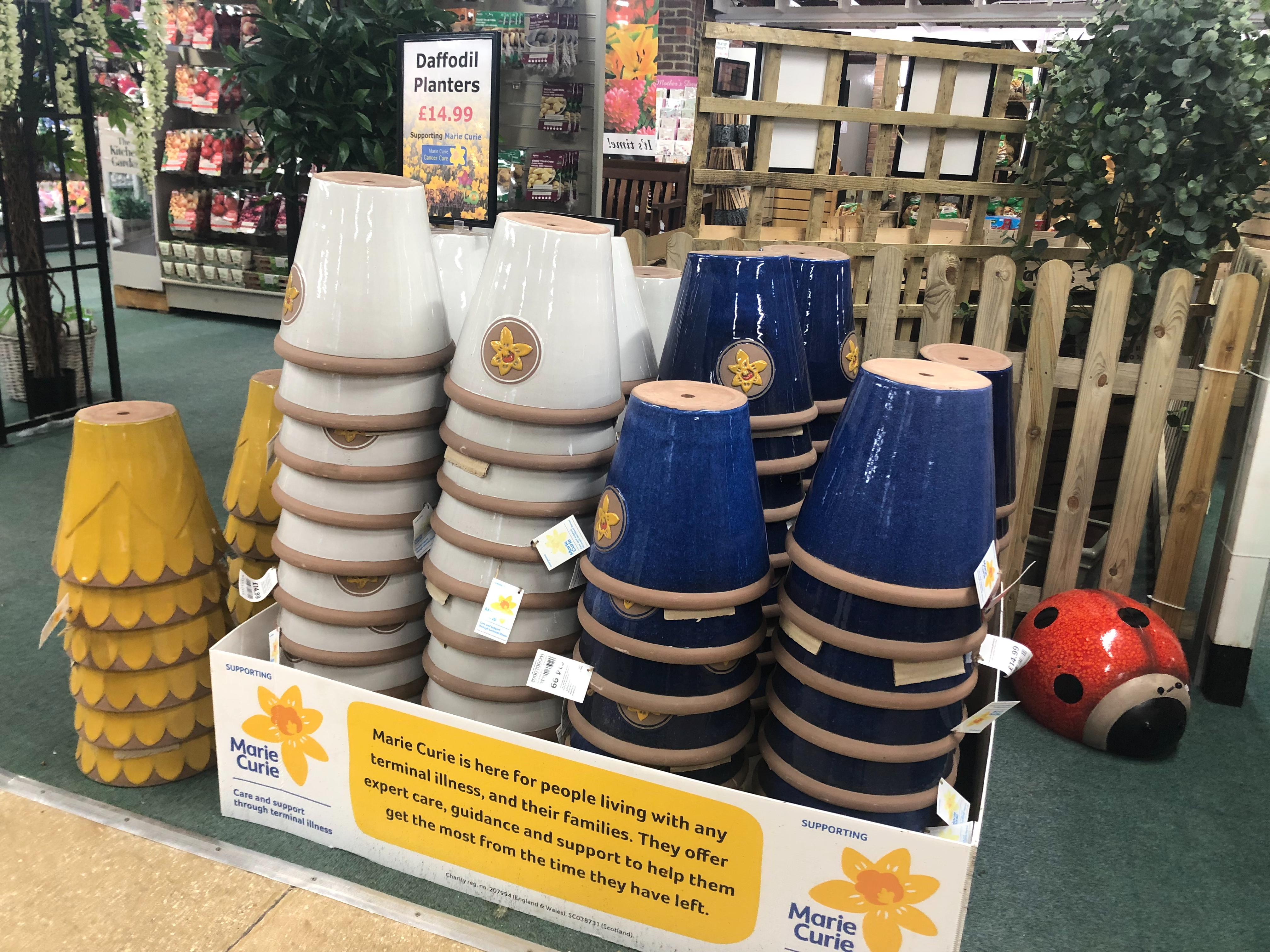 Marie Curie Charity Pots