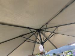 3m Parasol - £105