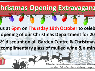 Christmas Opening Extravaganza, includes discounted product!