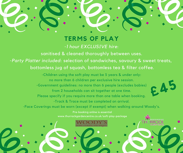 Soft Play Hire SM Terms of Play.png