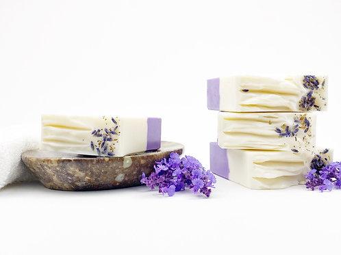 Gentle Lavender