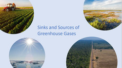Sinks and Sources of Greenhouse Gases