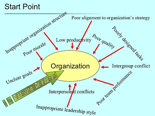 Organizing for Success 3.0, for Leaders