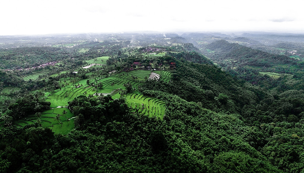 The most beautiful hotel view in Banyuwangi