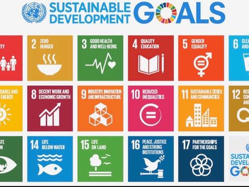 The United Nations 2030 Agenda (Investigative Report)