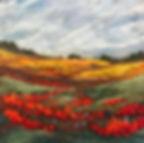 Poppy Vista