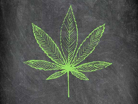 MMJ Patient Education: essential but lacking