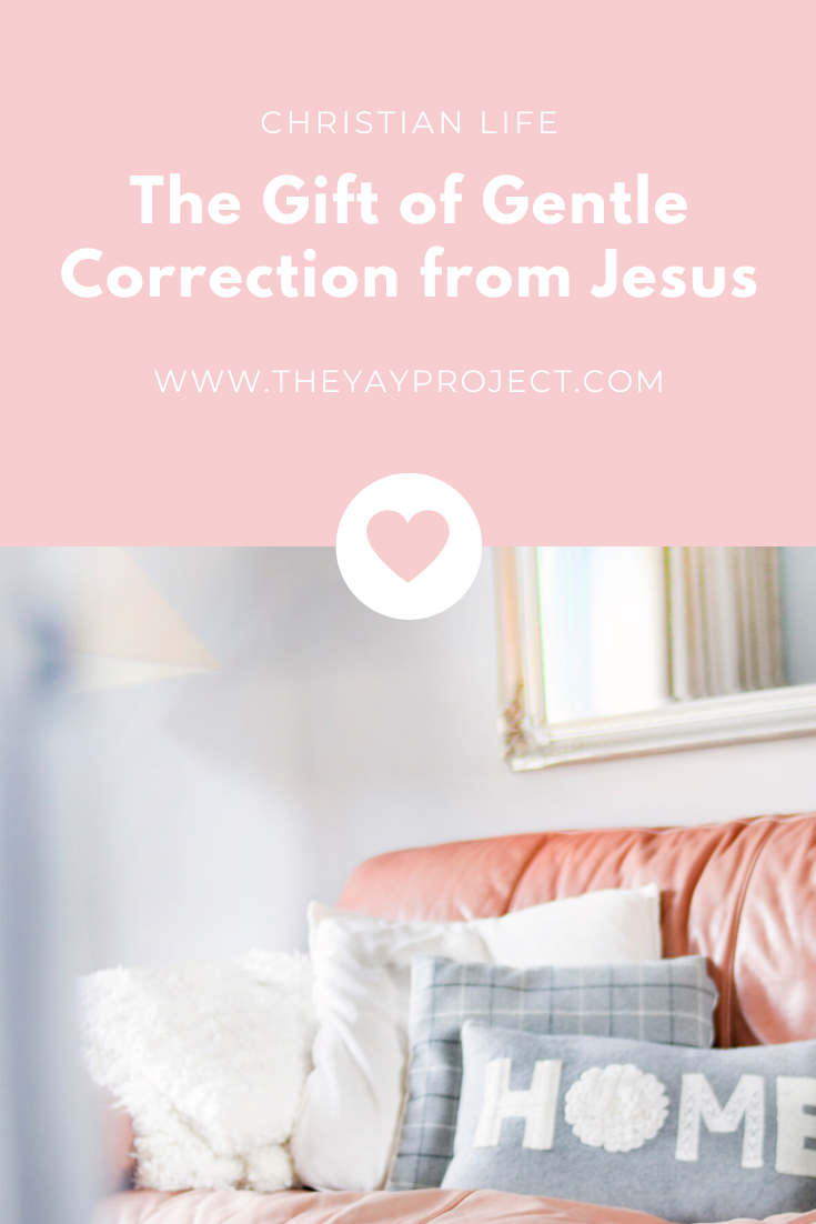 Christian blog on gentle correction from Jesus by The Yay Project