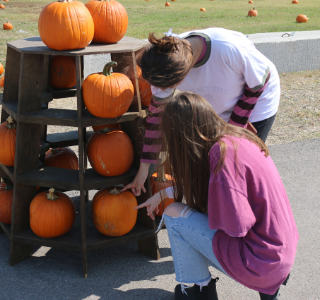 Students explain favorite fall traditions