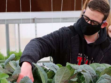 Students take advantage of newly completed greenhouse