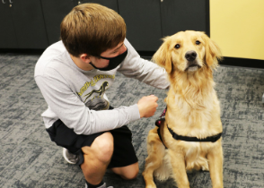 School therapy dog comforts students during stressful time