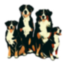 Alajaoston Uusi Logo 1.jpg