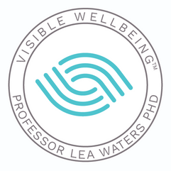 Visible Wellbeing School Partnerships