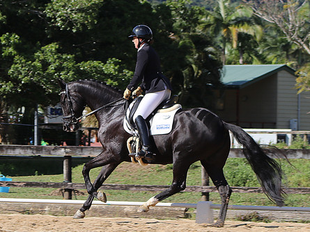 Far North Equestrian Group 2018 Dressage Championships